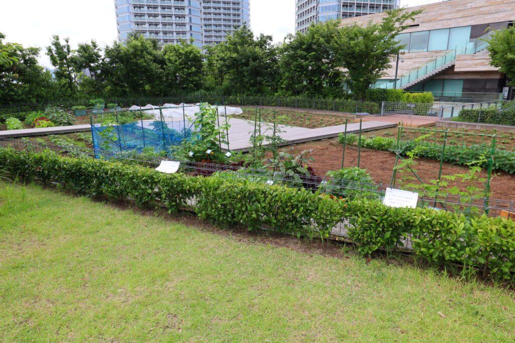二子玉川ライズのルーフガーデンの菜園広場