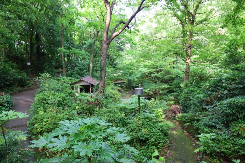 川崎市民プラザの日本庭園
