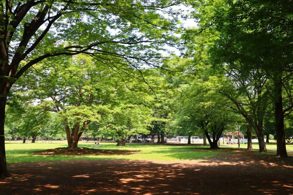 砧公園の風景