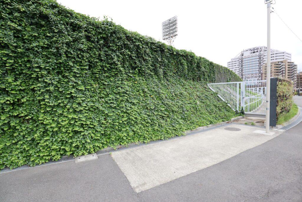 富士通スタジアム川崎の緑化