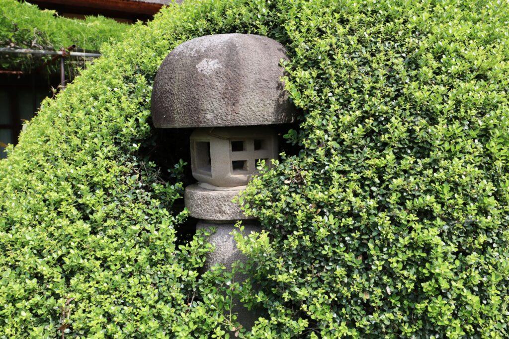 飯田家住宅の主屋前の灯籠