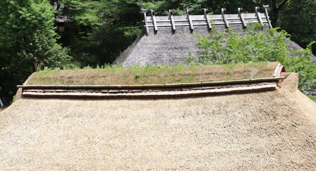 日本民家園の神奈川の村の清宮家住宅屋根