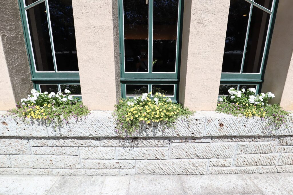 自由学園明日館の窓の草花