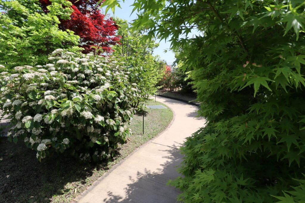 目黒天空庭園の潤いの森