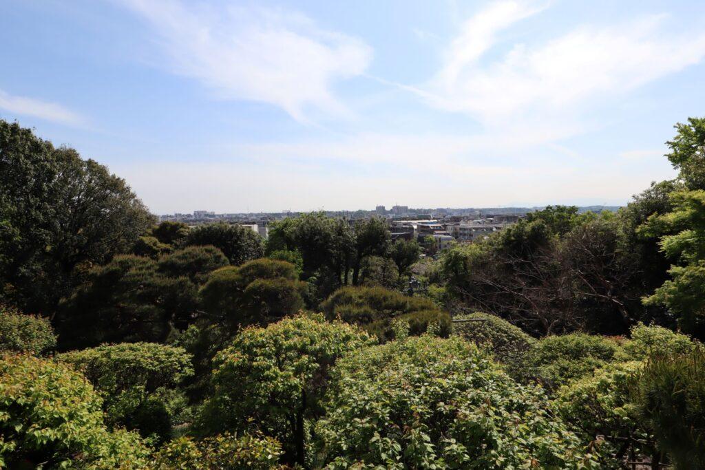 静嘉堂文庫美術館からの風景
