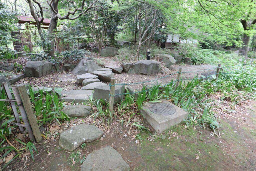 等々力緑地四季園の池